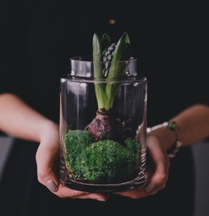 kaboompics-com_woman-holding-hyacinth